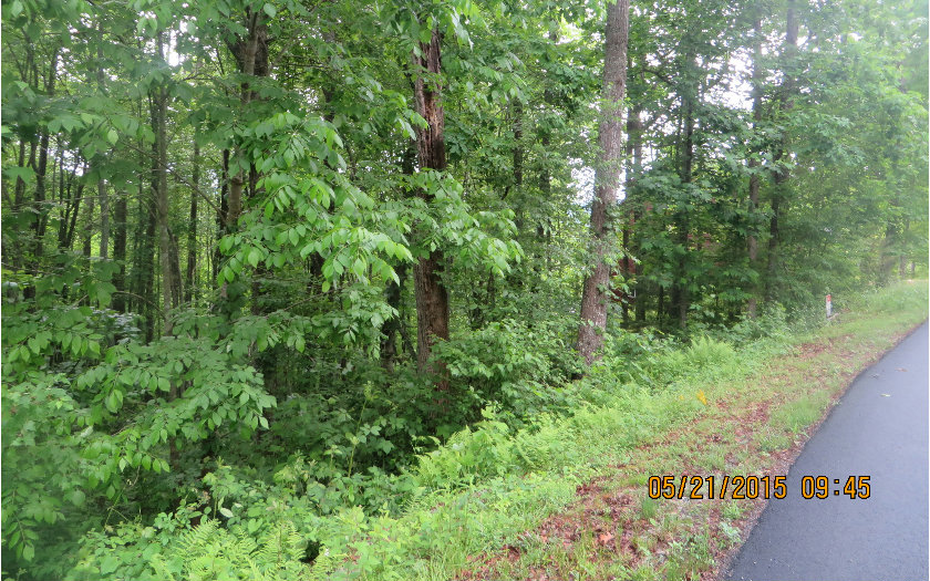 248333 Blairsville Vacant Lot