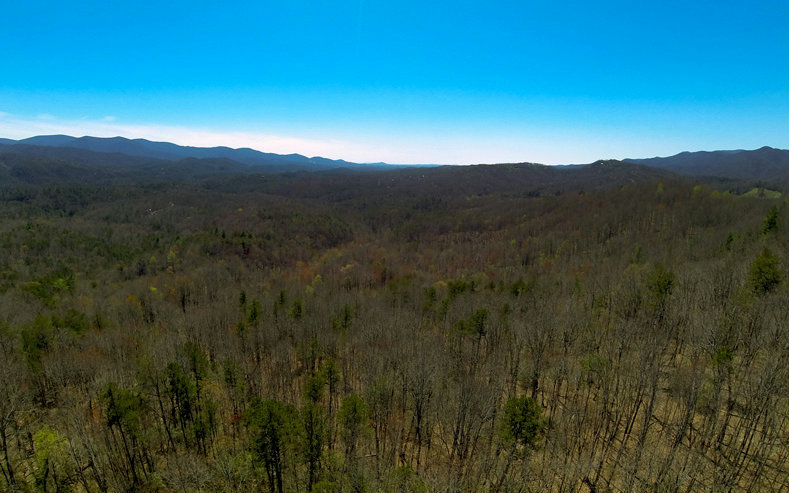 262633 Blue Ridge Acreage