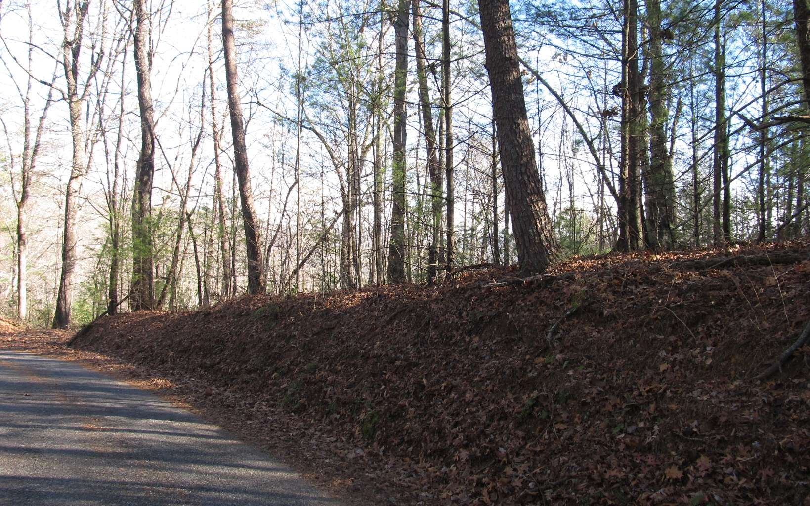 282834 Blairsville Vacant Lot