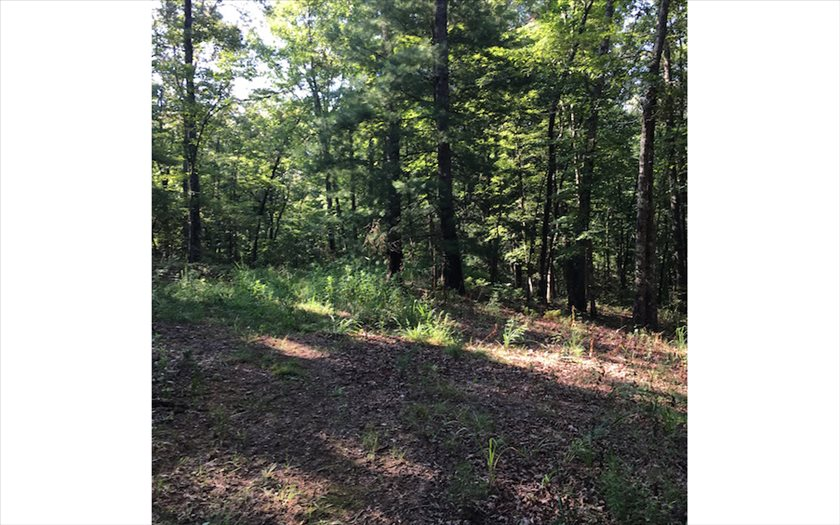 271435 Blue Ridge River Access Lot