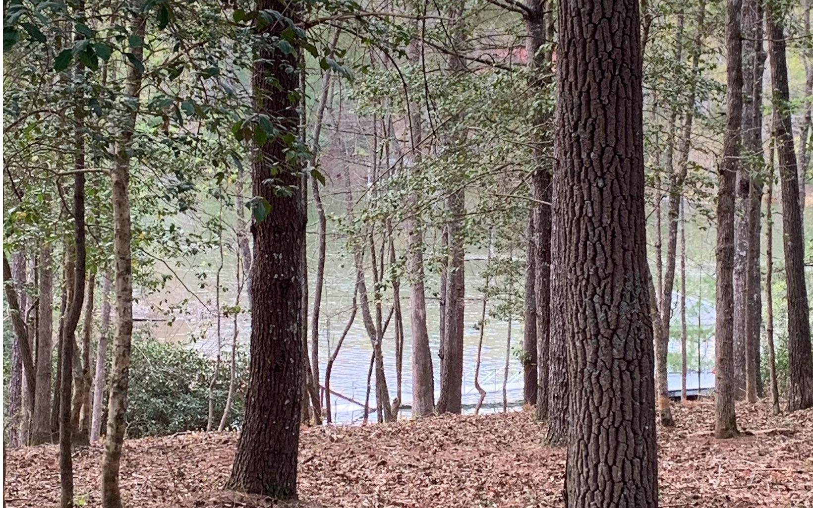 306335 Blairsville Lake Front Lot