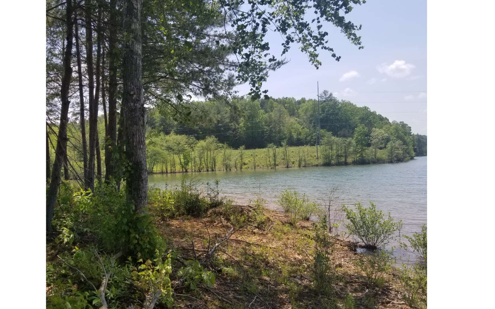 278036 Blairsville Lake Front Lot