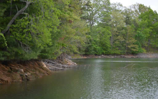 243037 Blairsville Lake Front Lot