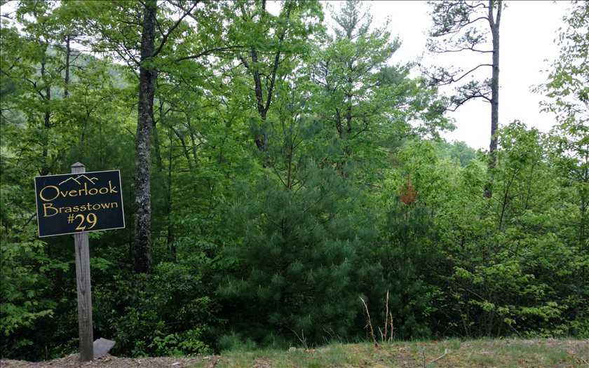 267237 Brasstown Vacant Lot