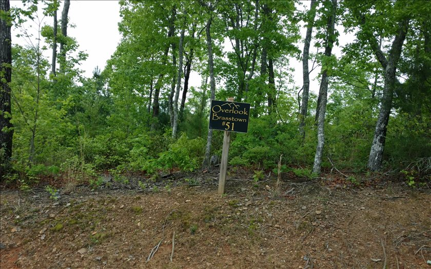 267437 Brasstown Vacant Lot