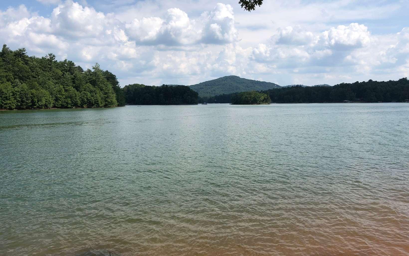 280037 Blairsville Lake Front Lot