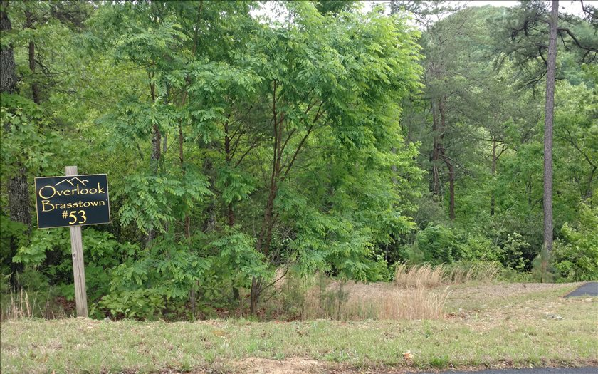 267438 Brasstown Vacant Lot