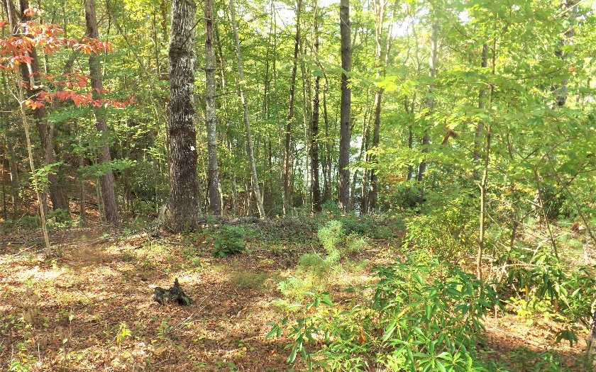 272138 Blairsville Lake Access Lot