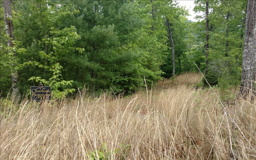 267240 Brasstown Vacant Lot