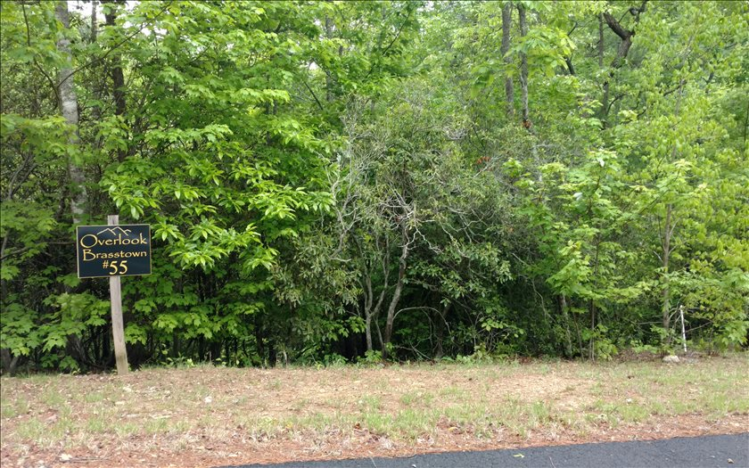 267440 Brasstown Vacant Lot