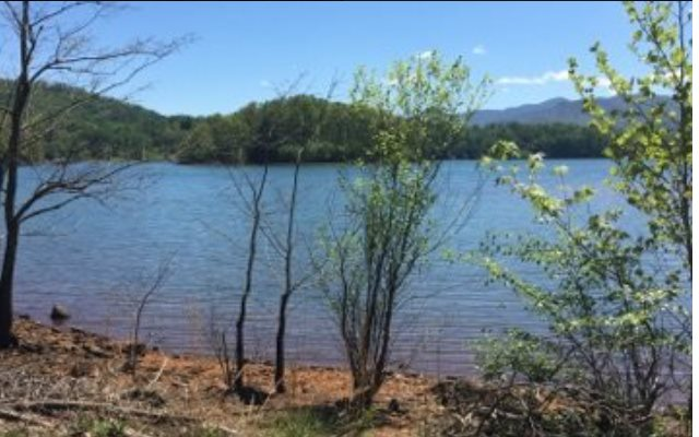 272640 Hiawassee Lake Front Lot