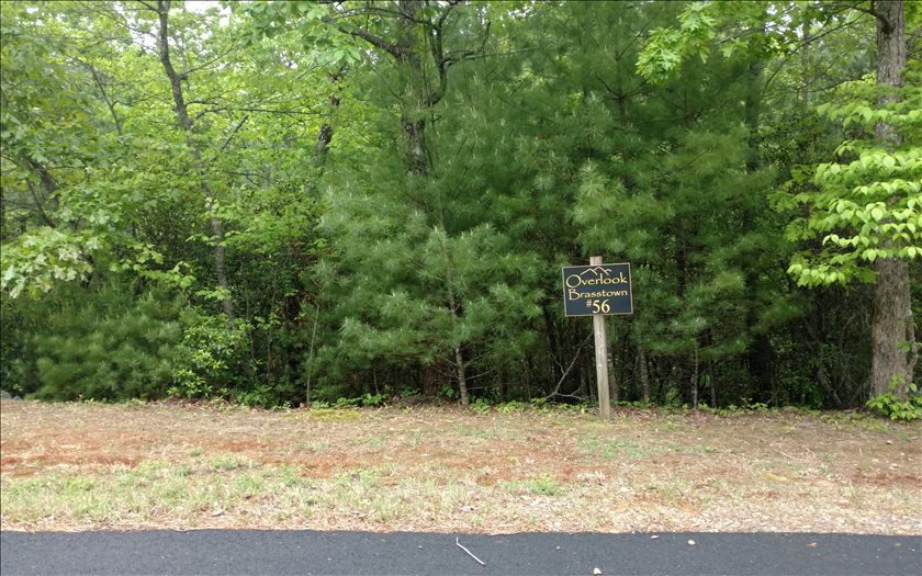 267441 Brasstown Vacant Lot