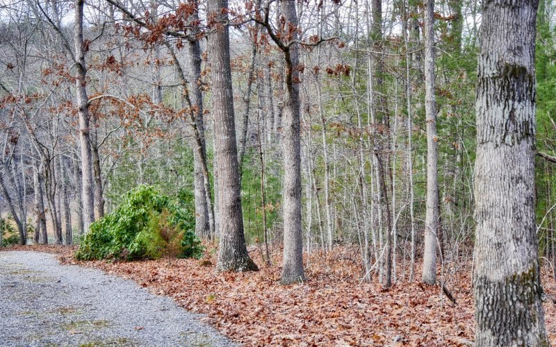 274941 Blairsville Lake Front Lot