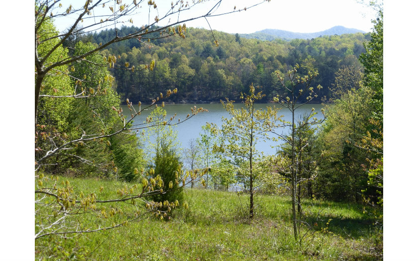 247342 Blairsville Lake Front Lot