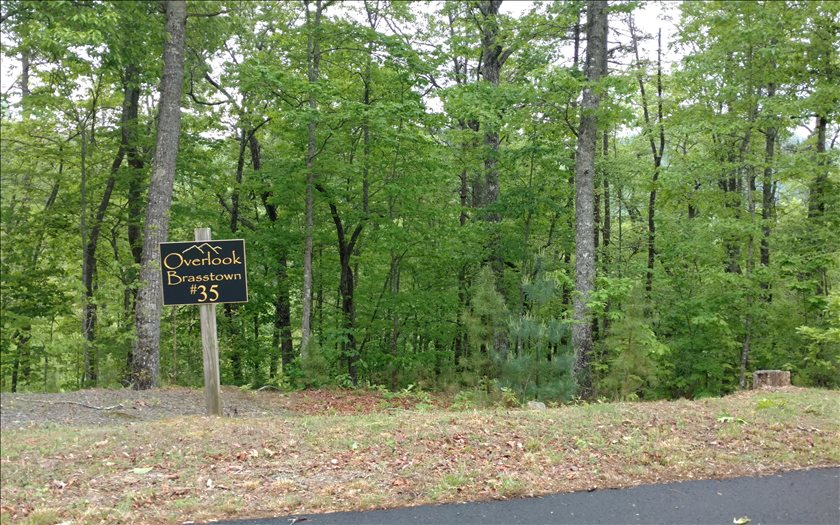 267242 Brasstown Vacant Lot