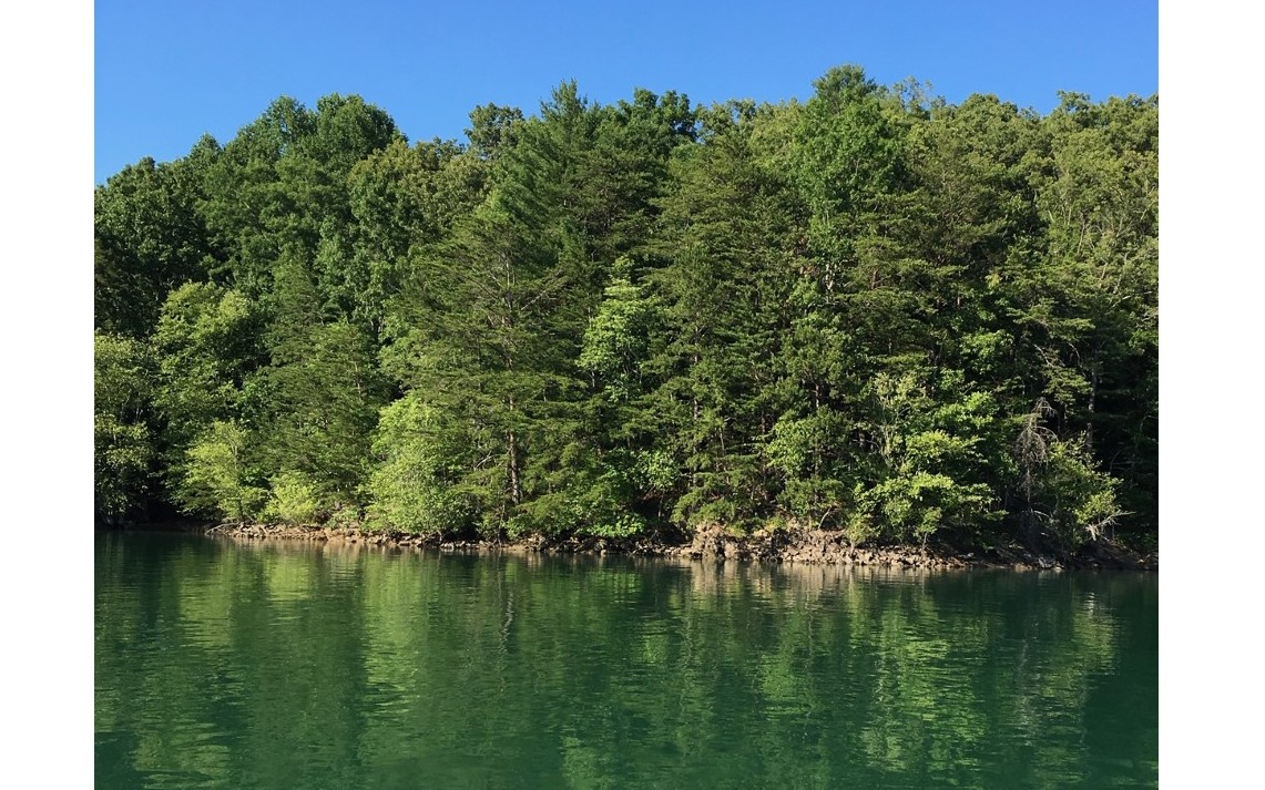302642 Morganton Lake Front Lot
