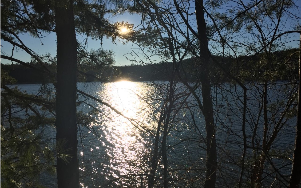 302642  Lake Front Lot