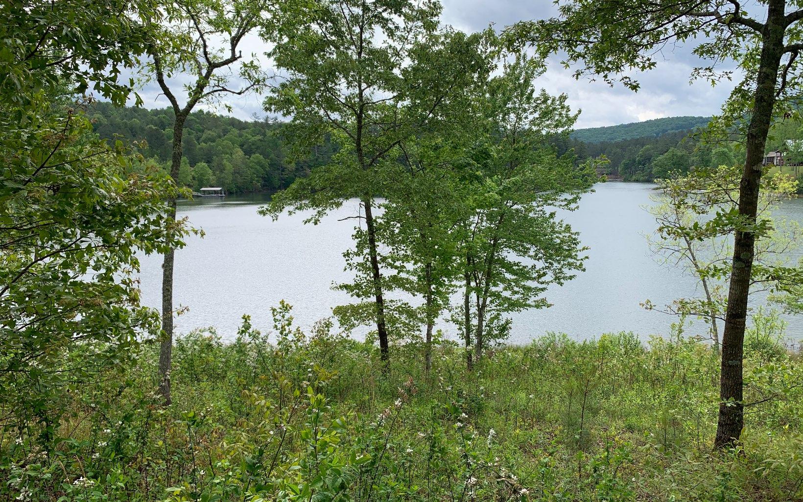 307342 Blairsville Lake Front Lot