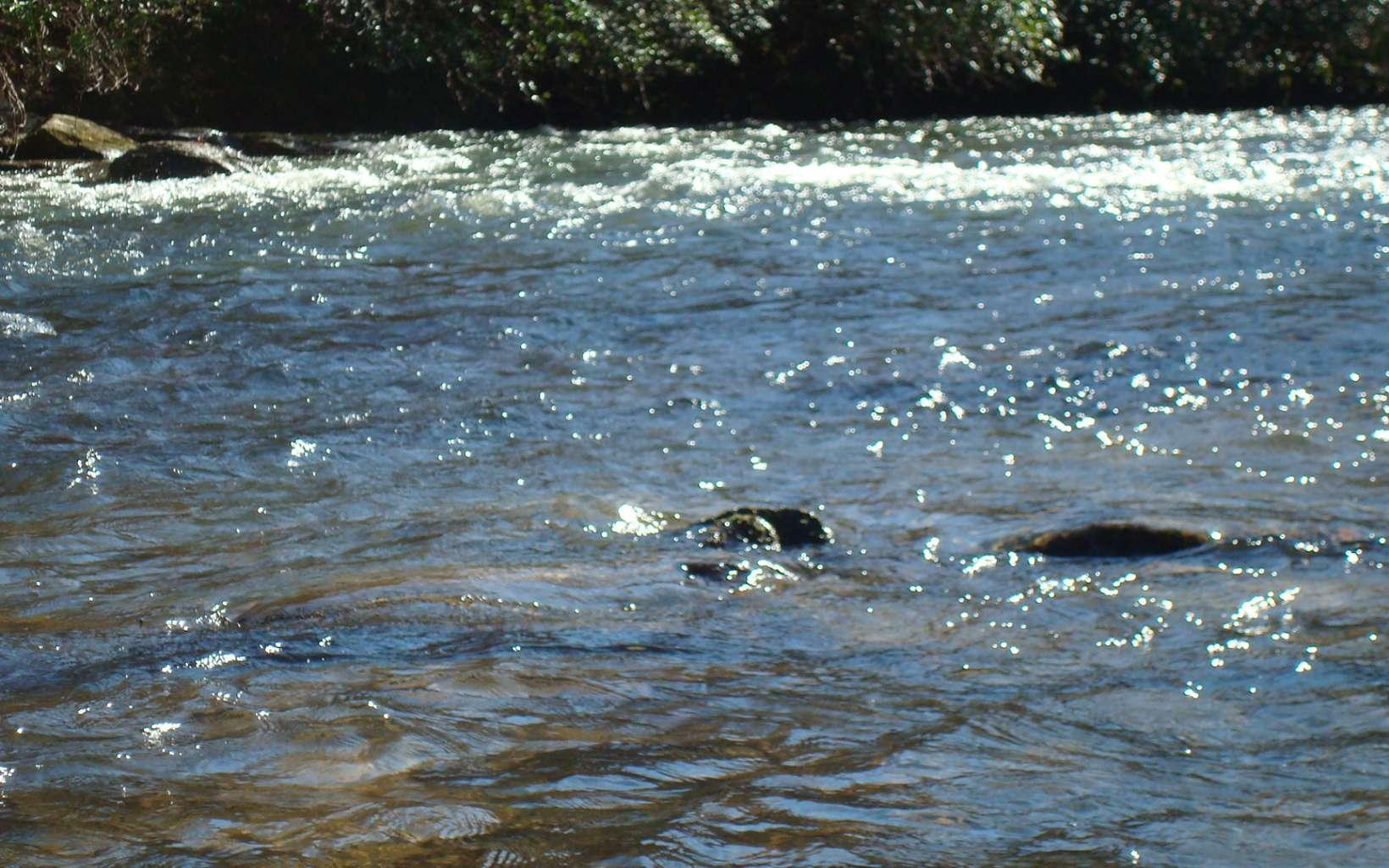 296743 Ellijay River Front