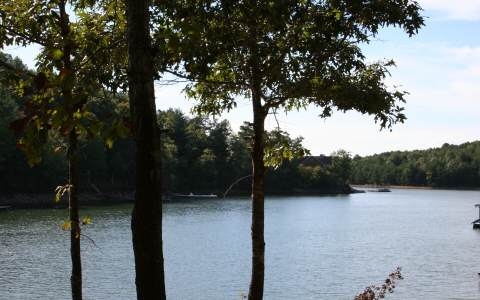 256844 Blairsville Lake Front Lot