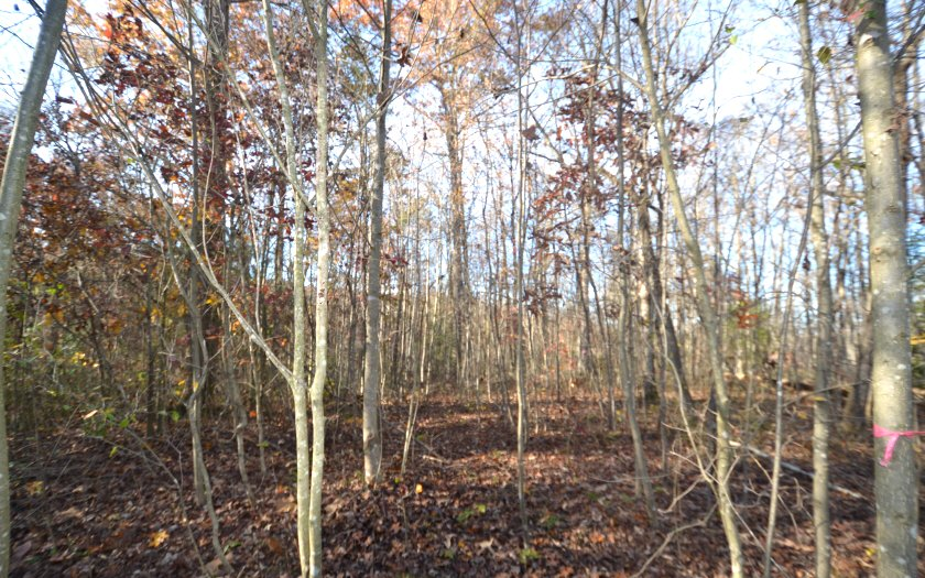 273344 Blue Ridge River Access Lot