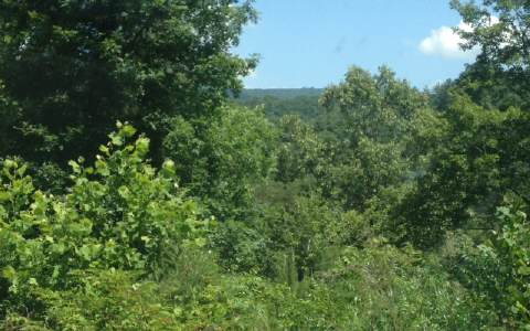 282244  River Access Lot