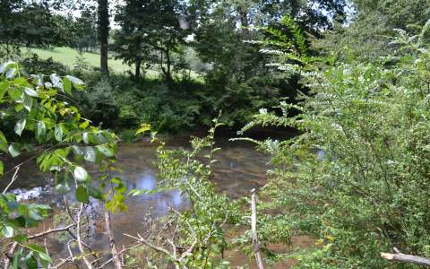 282244 Ellijay River Access Lot