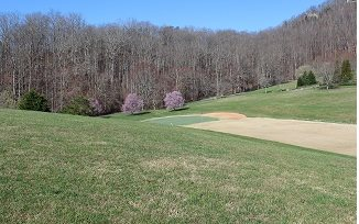 275445 Hayesville Vacant Lot