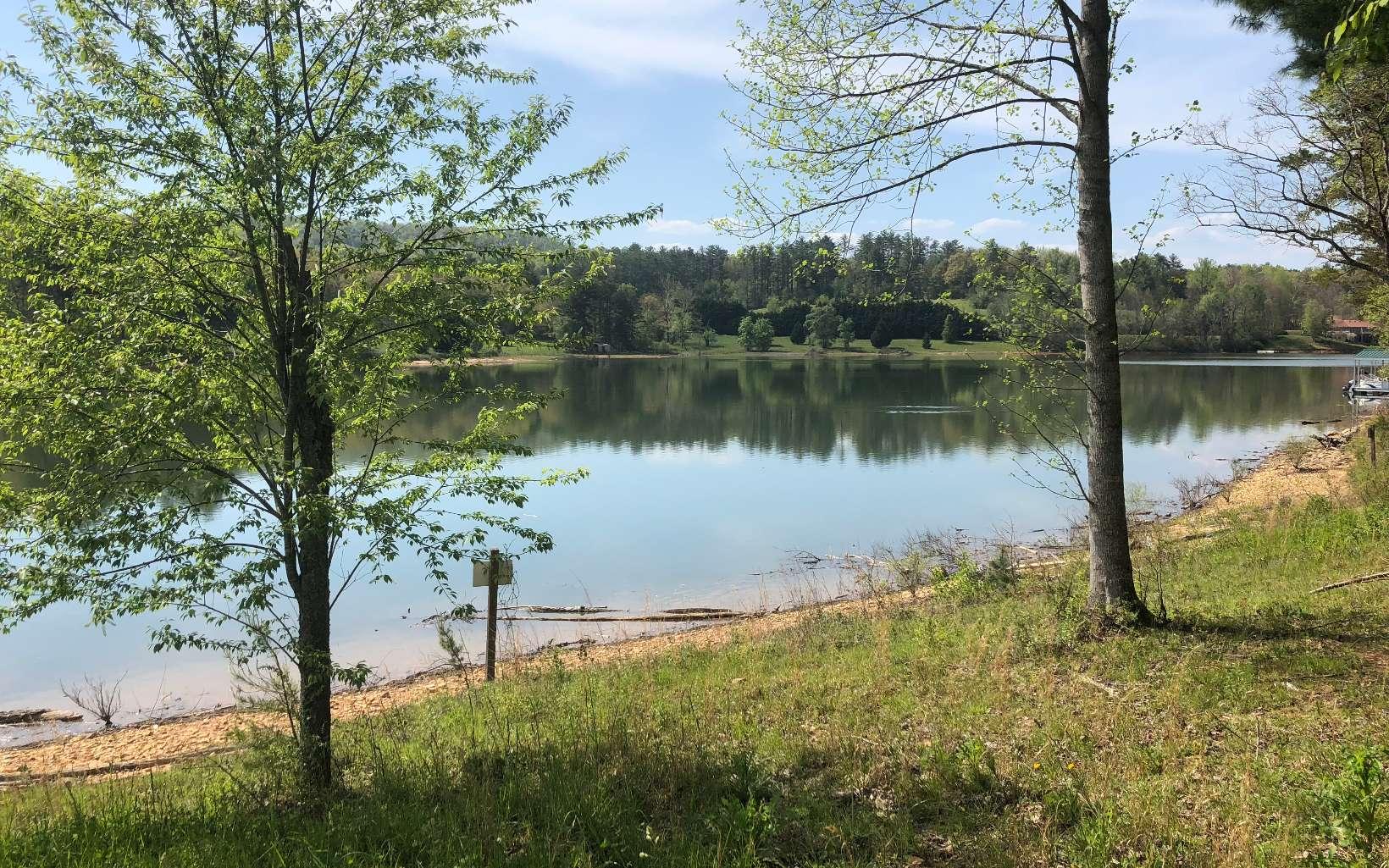 295645 Blairsville Lake Front Lot