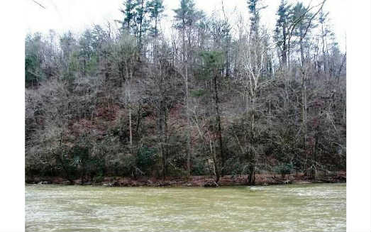 227047 Ellijay Vacant Lot