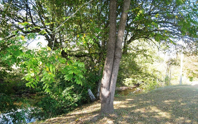 298047 Marble Vacant Lot