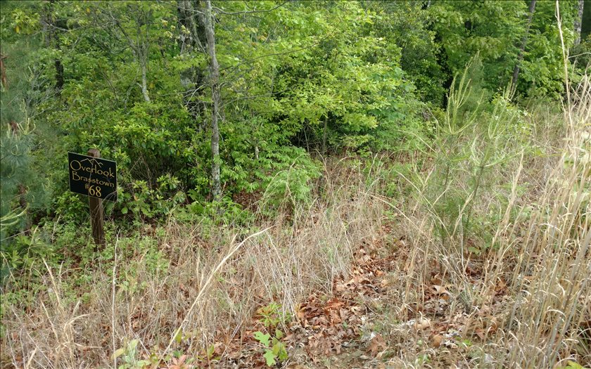267448 Brasstown Vacant Lot