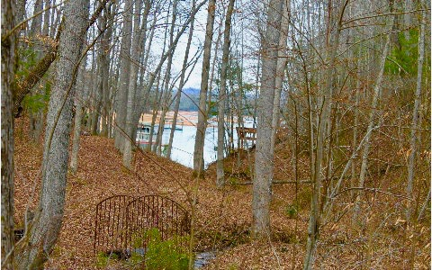 283948 Blairsville Vacant Lot