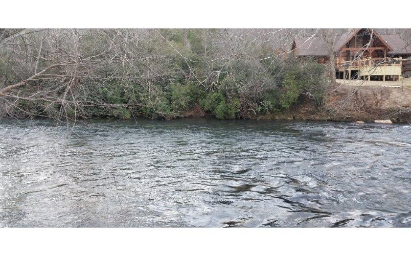 284548 Ellijay River Front