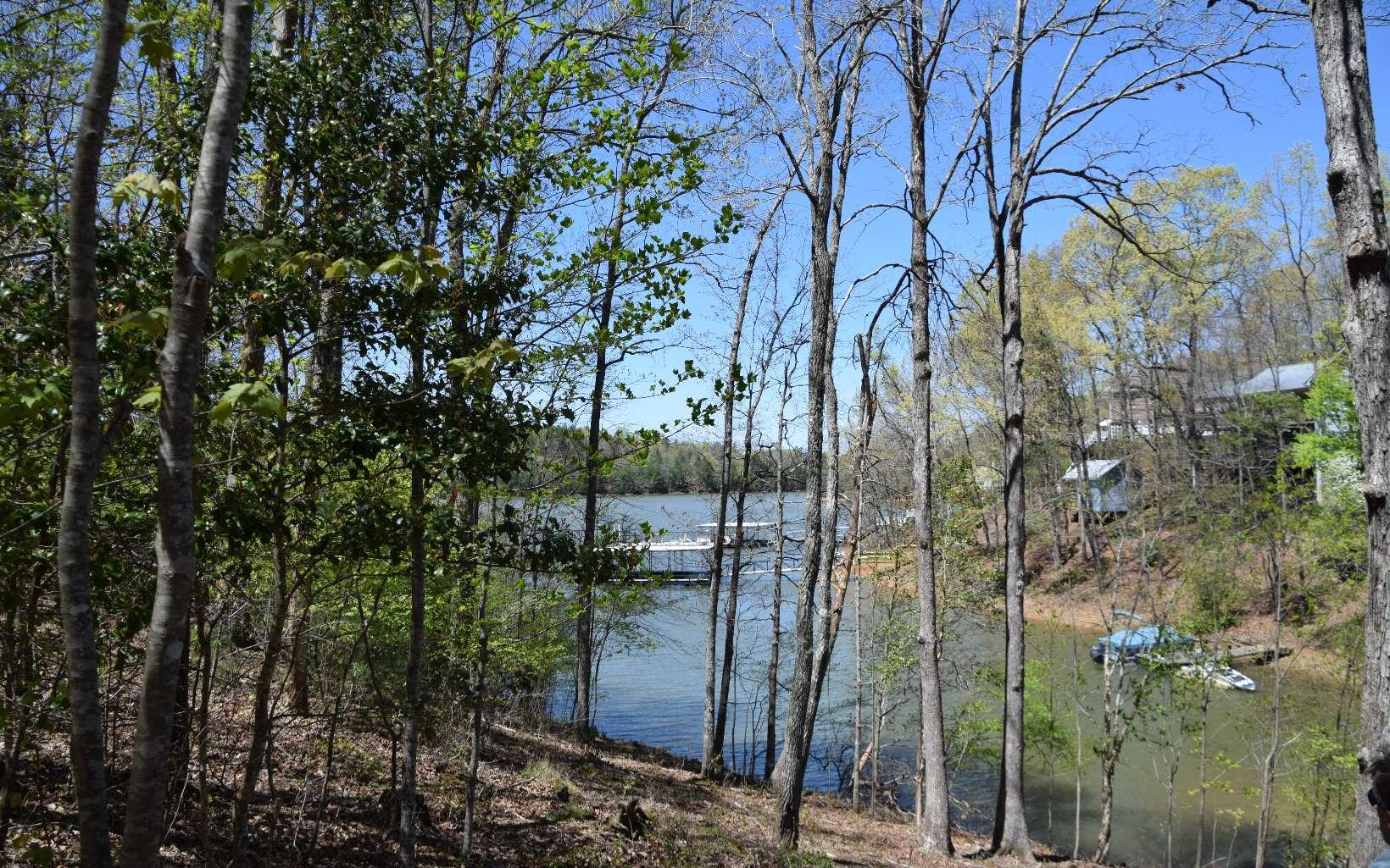 305749 Blairsville Lake Front Lot