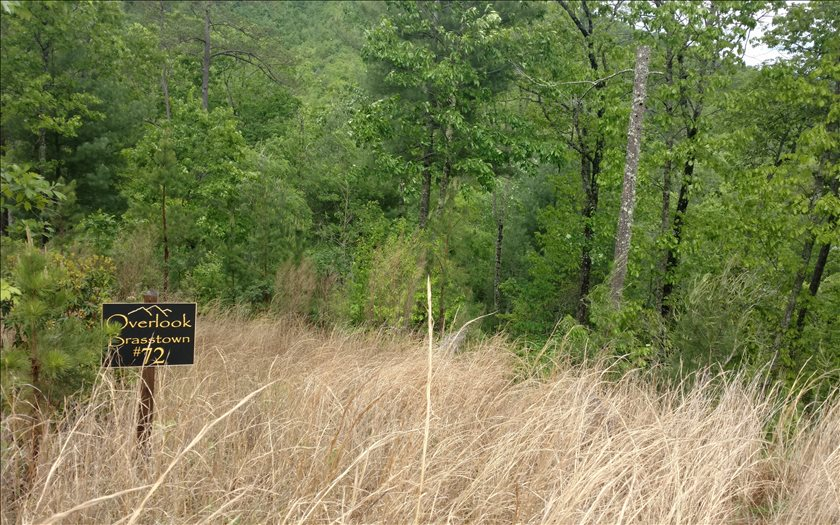 267451 Brasstown Vacant Lot