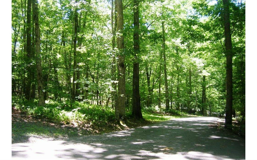 283351 Mineral Bluff River Access Lot