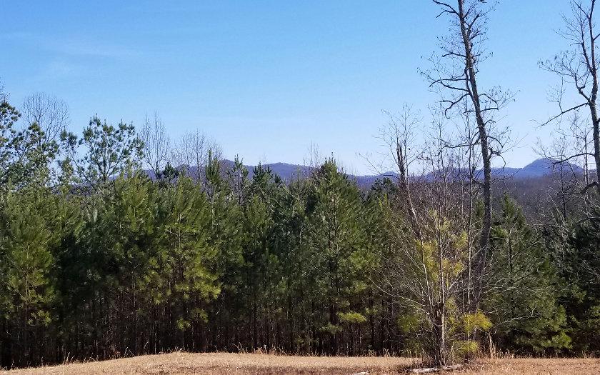 285252 Blairsville
