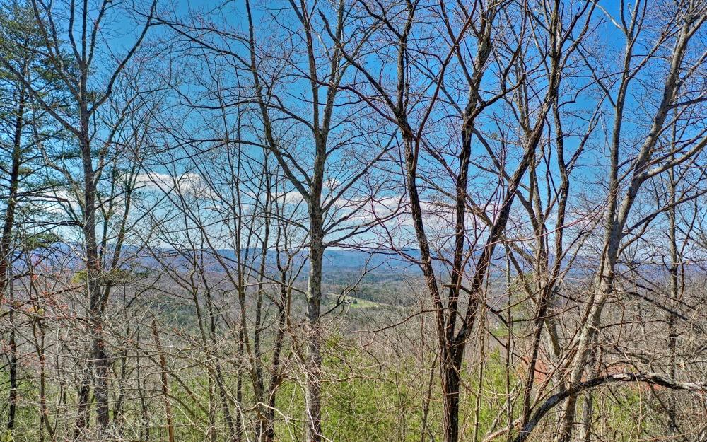 286852 Blue Ridge