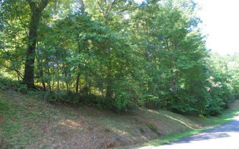 225353 Talking Rock Vacant Lot