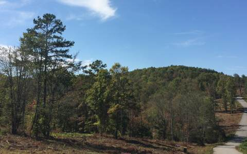 252454 Blairsville Vacant Lot