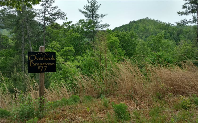 267454 Brasstown Vacant Lot