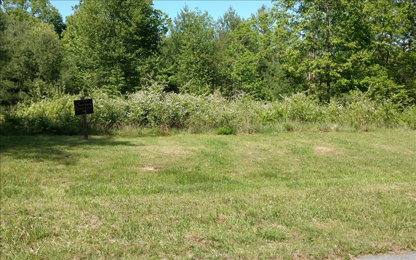 267256 Murphy Vacant Lot