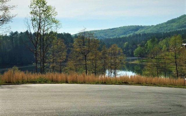 274056 Blairsville Lake Access Lot