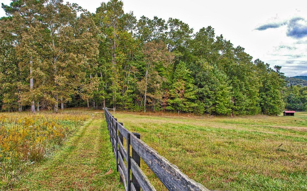282457 Ellijay River Access Lot