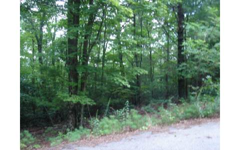 231858 Blairsville Vacant Lot
