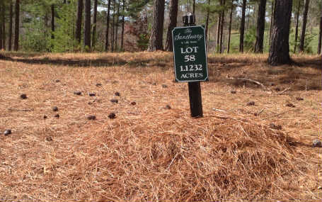 237858 Blairsville Vacant Lot