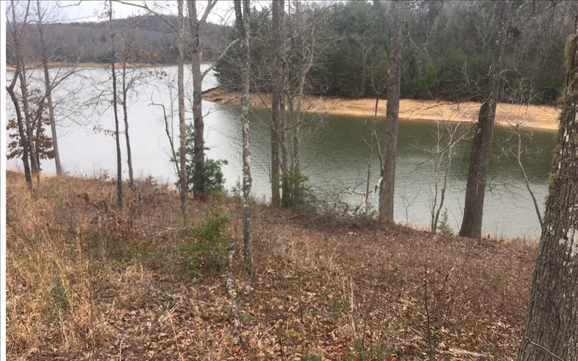 276358 Blairsville Lake Front Lot