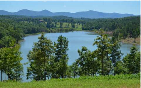 247559 Blairsville Lake Front Lot