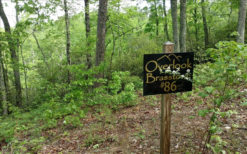 267459 Brasstown Vacant Lot
